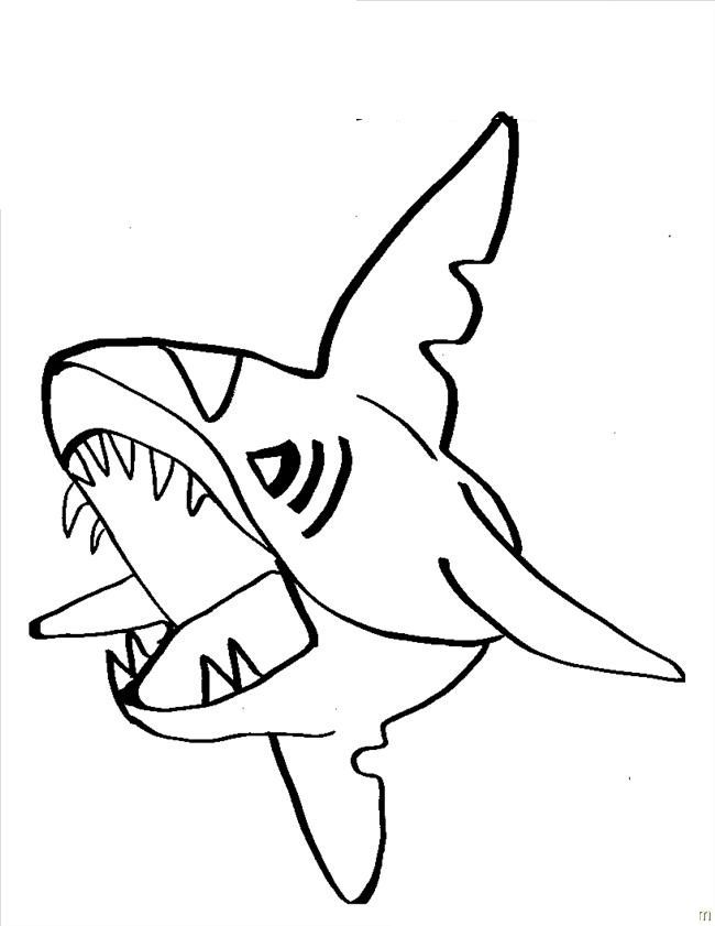 sharks with sharp teeth coloring pages for kids printable sharks coloring pages for kids - Coloring Pages Sharks Printable