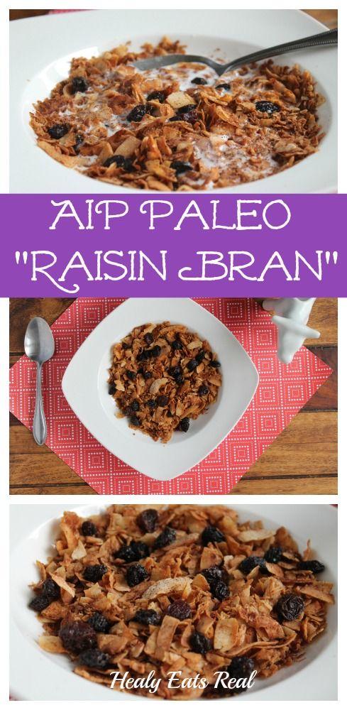 Raisin Bran Recipe by Healy Eats Real #AIP #paleo