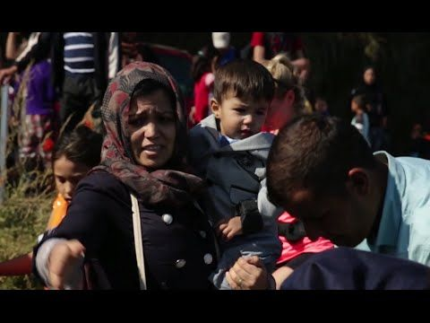 Who Are Syrian Refugees Arriving in Greece?
