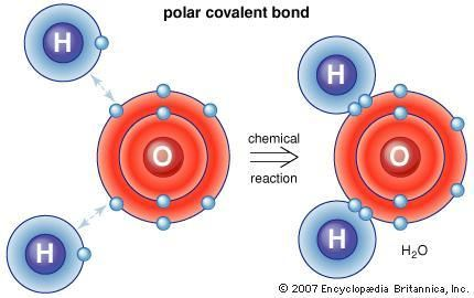 Covalent bond #covalent #bond, #encyclopedia, #encyclopaedia, #britannica, #article http://virginia.nef2.com/covalent-bond-covalent-bond-encyclopedia-encyclopaedia-britannica-article/  # Covalent bond covalent bond, in chemistry. the interatomic linkage that results from the sharing of an electron pair between two atoms. The binding arises from the electrostatic attraction of their nuclei for the same electrons. A covalent bond forms when the bonded atoms have a lower total energy than that…