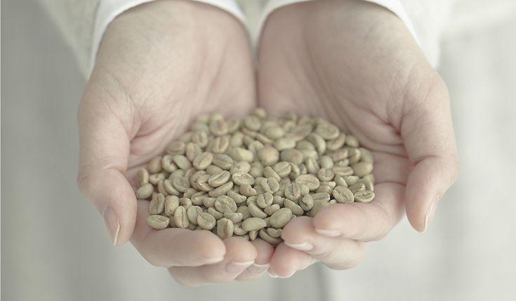 究極のコーヒー体験を自宅で家庭用焙煎機The Roast発売PANASONIC via Pocket http://ift.tt/2k1TPKr