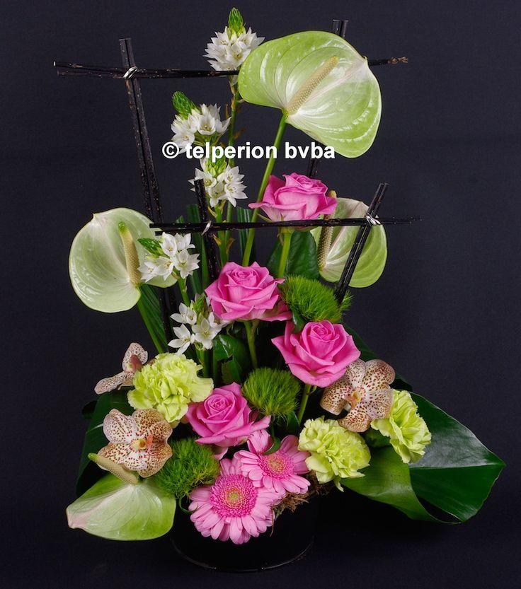 Bloemen & Planten | Ongecategoriseerd