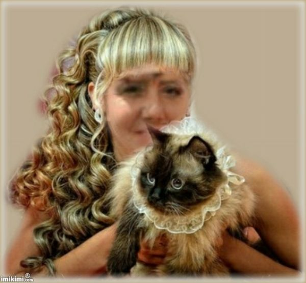 Beautiful Girl With Cat