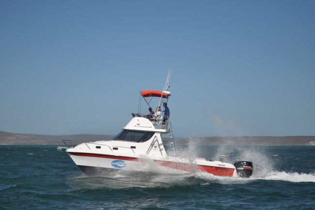 Elite Charters - Deep Sea Fishing in the West Coast, South Africa