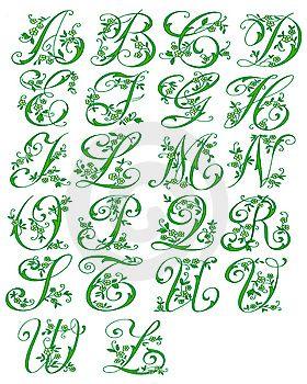 картина показывает весь буквы цвет зеленый к показывать природа декорированный цветочный стиль курсивный шрифт