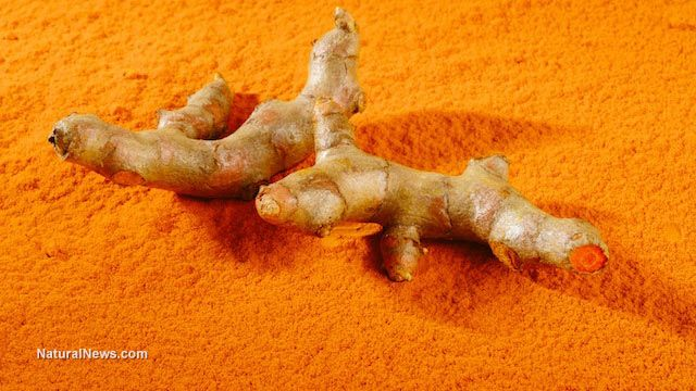Turmeric naturally increases brain cell growth. http://www.naturalnews.com/047325_turmeric_brain_neuronal_growth.html
