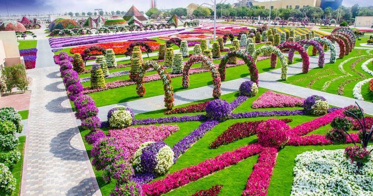 Πολύχρωμα λουλούδια, πυκνή βλάστηση, σχηματισμοί με φυτά που εντυπωσιάζουν και μια όαση πρασίνου γεννιέται στην πόλη, προσφέροντας απόλαυση στους κατοίκους που κάνουν εκεί τη βόλτα τους. Όμορφοι κήποι σε όλον τον κόσμο κερδίζουν στο στοίχημα της δημιουργίαε πράσινων γωνιών εντός πόλης και φροντίζονται με ιδιαίτερη προσοχή από όλους αφού αποτελούν μια ανάσα μέσα στο κλεινόν …