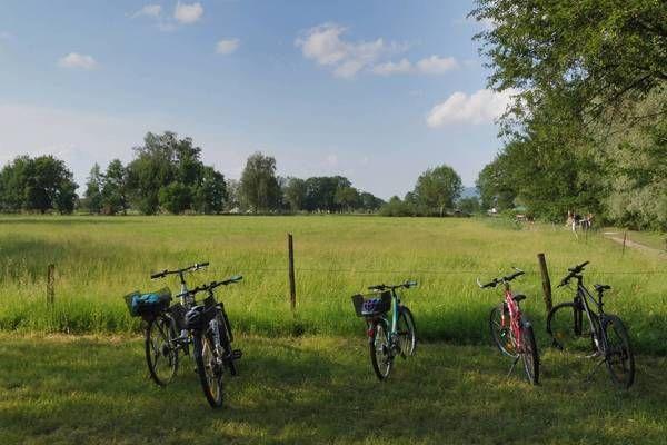 Gemeinden arbeiten an Radwege-Konzept durch das Lauteracher Ried
