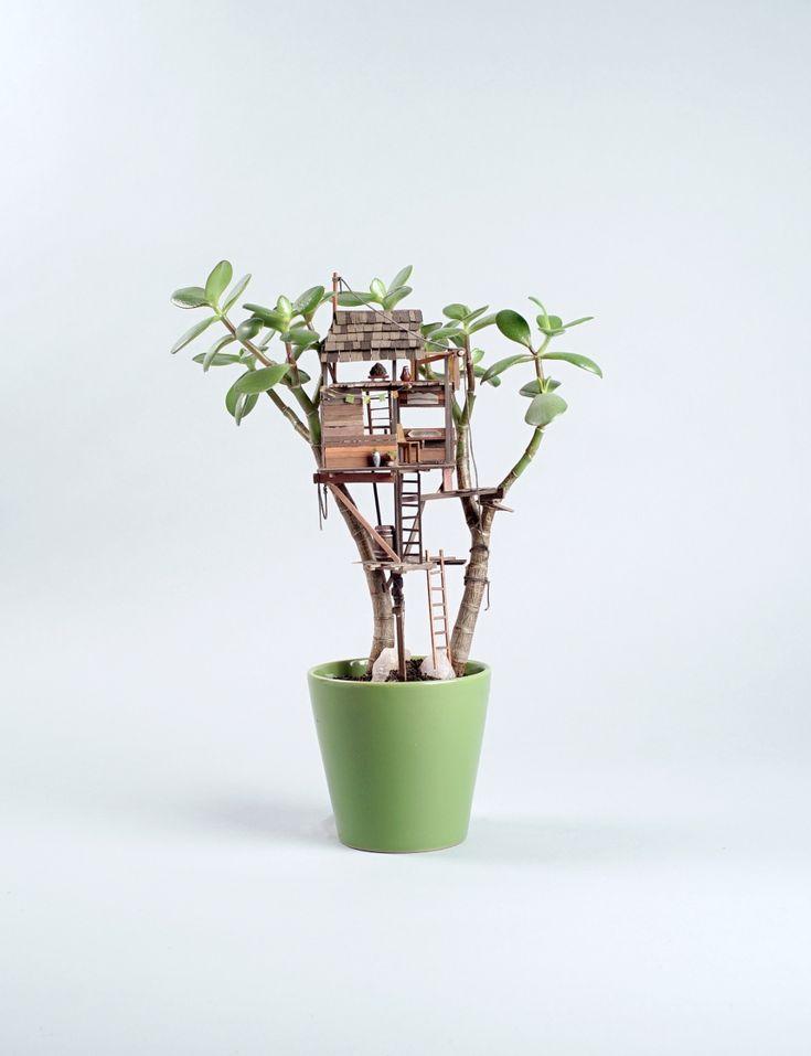 Художник Джедедайя Корвин Вольтц создаёт очаровательные миниатюрные дома в цветочных горшках с растениями.