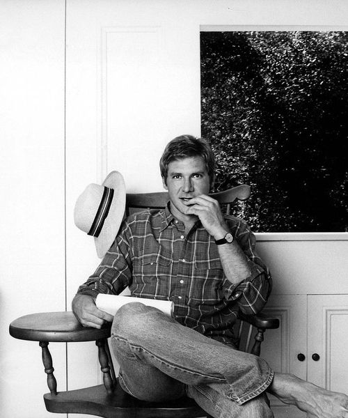 Harrison Ford.... Want to come over for some pot roast and apple pie?  Nothing fancy...we'll just have a nice, cozy evening.....haha!