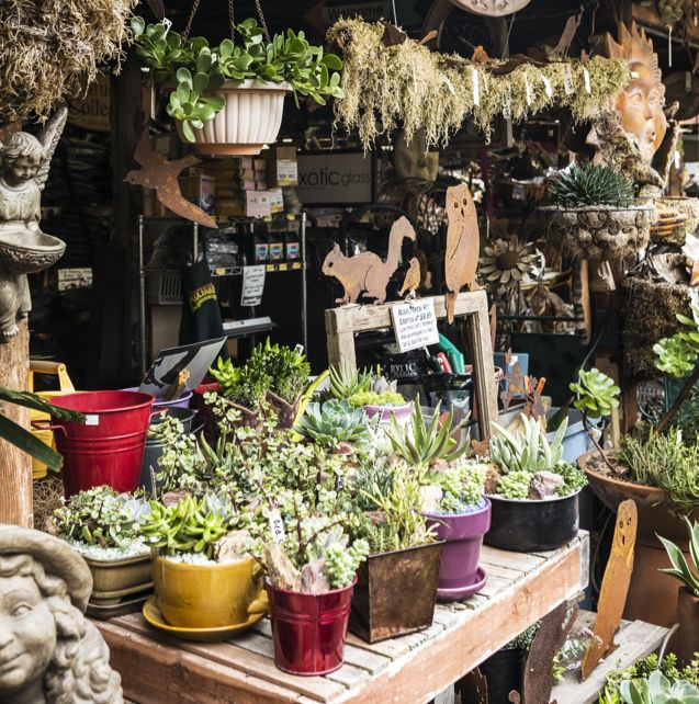 Go to Price Street for food & succulents - Pismo Beach, CA