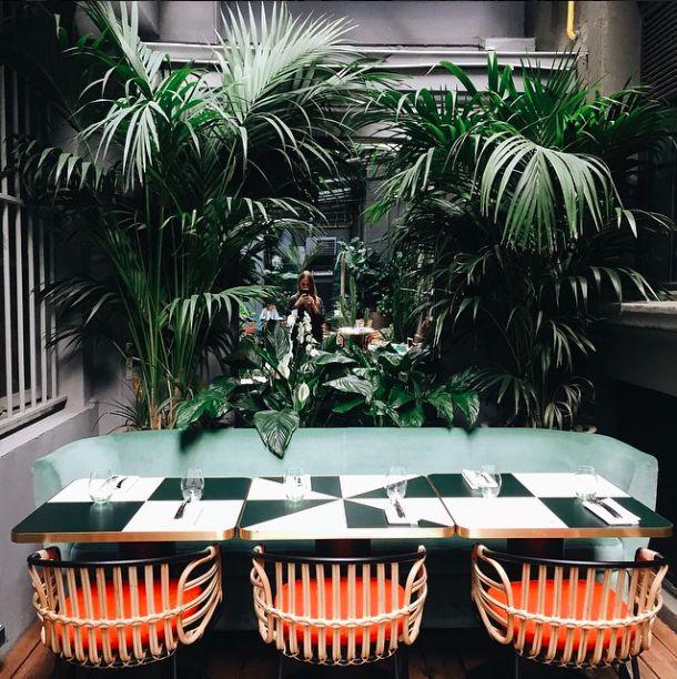 muchas plantas se sombra, acentos de color en los asientos de las sillas, se pueden hacer unas forro removibles para los asientos de las sillas existentes y así darles más caracter http://www.uk-rattanfurniture.com/product/charles-bentley-garden-wicker-ra