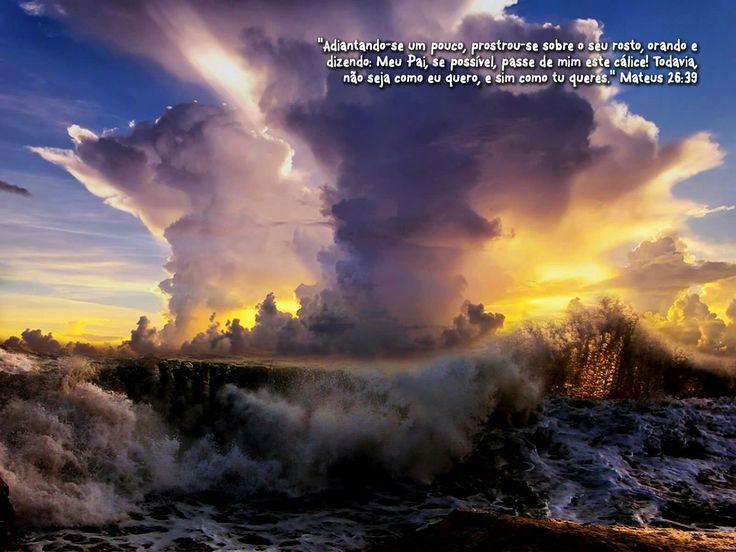 Bíblia Online  Versículos do Dia  Cantarei ao Senhor, porquanto me tem feito muito bem.Salmos13:6  E graças a Deus, que sempre nos faz triunfar em Cristo, e por meio de nós manifesta em todo o lugar a fragrância do seu conhecimento.2 Coríntios2:14