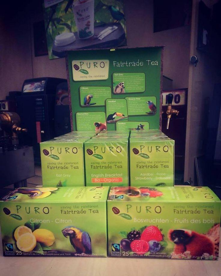 Puro Tea Types