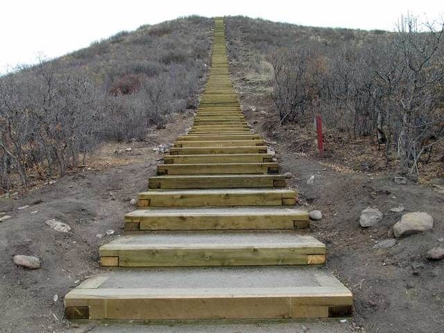 Challenge Staircase - Philip S Miller Park in Castle Rock