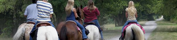 Rails to Trails- National Page with LInks to individual states!  Horseback Riding Trails and Trail Maps for Equistrians | TrailLink.com | TrailLink