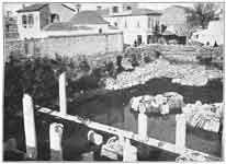 1906 ~ Η Ρωμαική Αγορά.