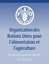Logo de l'Organisation des Nations Unies pour l'alimentation et l'agriculture