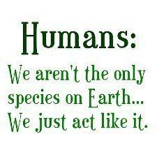 Humans: we aren't the only species on Earth... we just act like it.