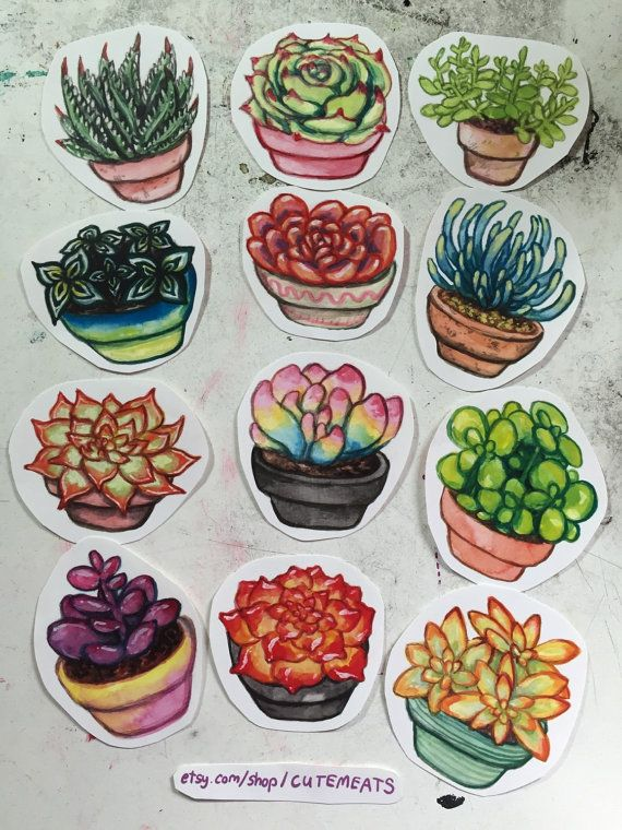 Do you have trouble keeping plants alive, even if theyre cactuses that barely need watering? Then you are like me, and love having little stickers of