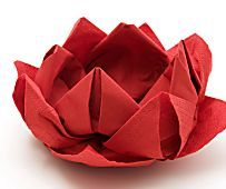 The Art of Origami: A Woman's Guide on How to Get Started