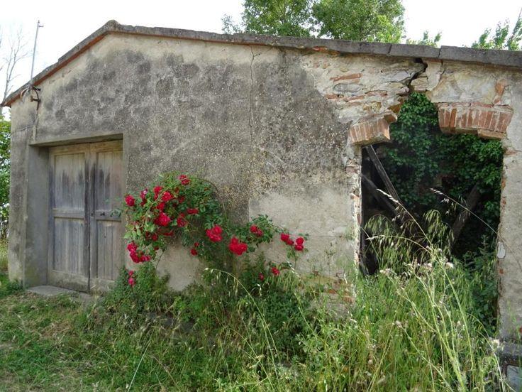 Vendita Porzione angolare di rustico San Giuliano Terme vicinanze