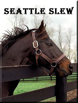 great influence ... seattle slew