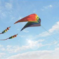 Parafoil kites are among the most powerful kites flown today. Invented in 1963 by Domina Jalbert, parafoil kites are lifted by wind entering open cells at the front of the kite. Large parafoil kites have enormous lifting power and must be anchored securely when being flown. While some parafoil kite plans are extremely complex, you can fly one of...