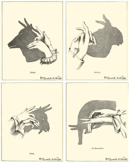 49 best { Shadow Puppets } images on Pinterest  Shadow play, Shadow puppets and Shadow theater