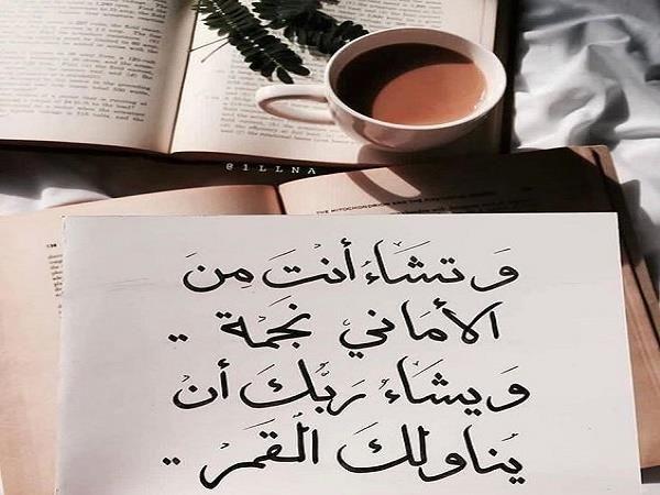 وتشاء أنت من الأماني نجمة ويشاء ربك أن يناولك القمر Funny Arabic Quotes Handwritten Quotes English Quotes
