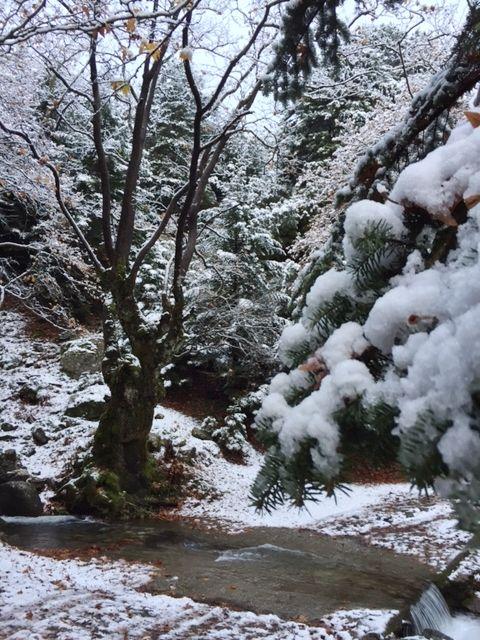 Φωτογραφίες από τον χιονισμένο Ταΰγετο | Laconialive.gr - Η ενημερωτική ιστοσελίδα της Λακωνίας, Νέα και ειδήσεις