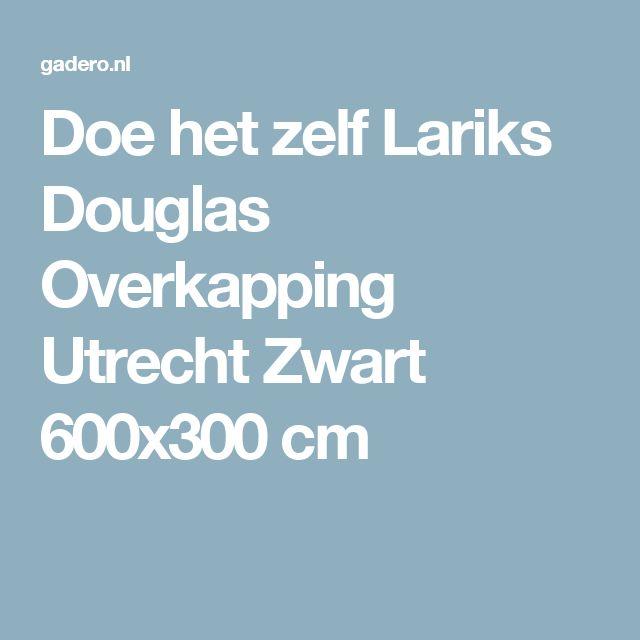 Doe het zelf Lariks Douglas Overkapping Utrecht Zwart 600x300 cm