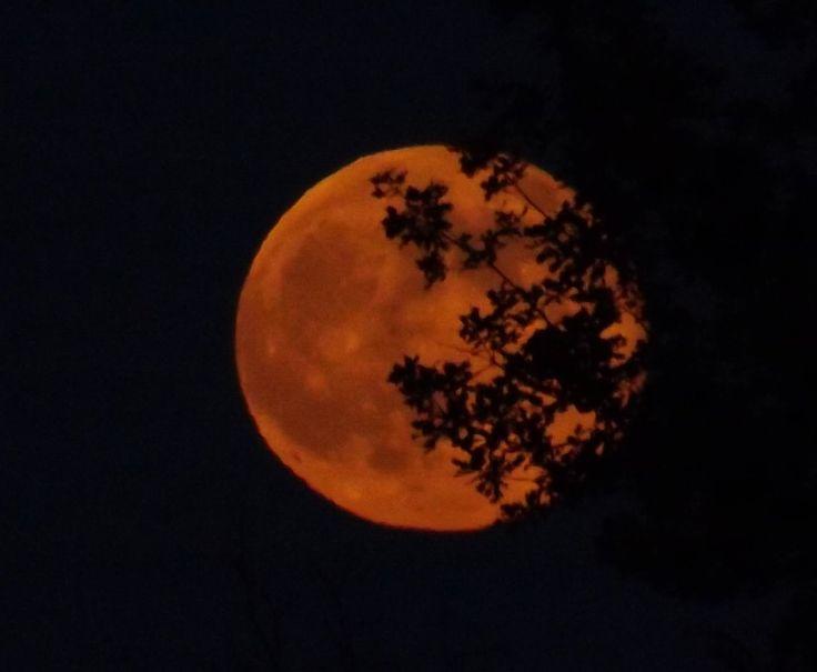 Guarda che luna. Fotoracconto del solstizio d'estate