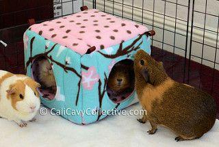 guinea pig fleece cube house review