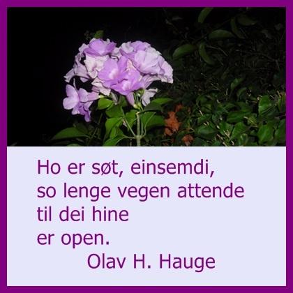 Olav H Hauge sitat
