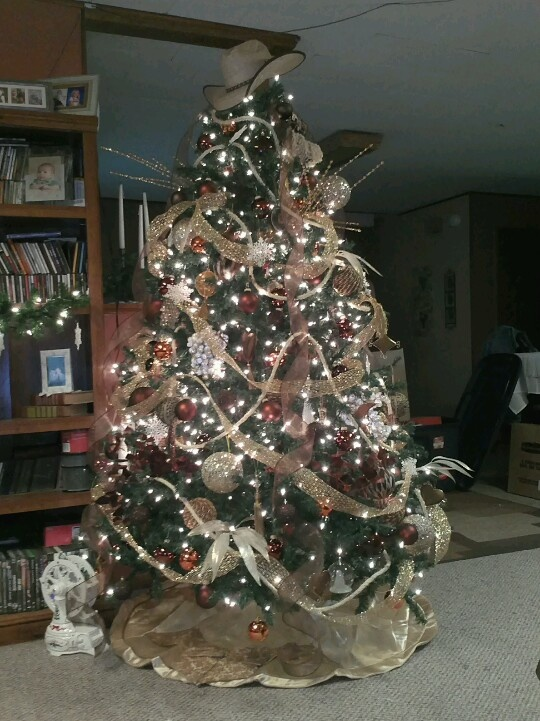 747 Best Images About Christmas Trees On Pinterest Trees