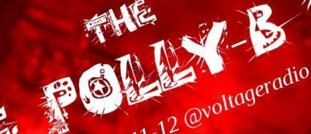 "Banner for the web radio show ""Polly-B"""