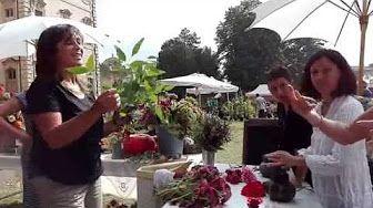 Ortocolto - Il laboratorio di composizione floreale 2° - YouTube