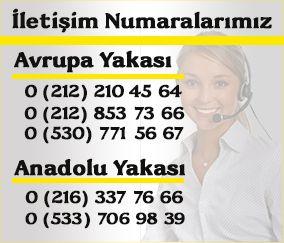 Arnavutköy merkezli böcek ilaçlama firmamız tüm İstanbul ilçelerine hizmet vermektedir.