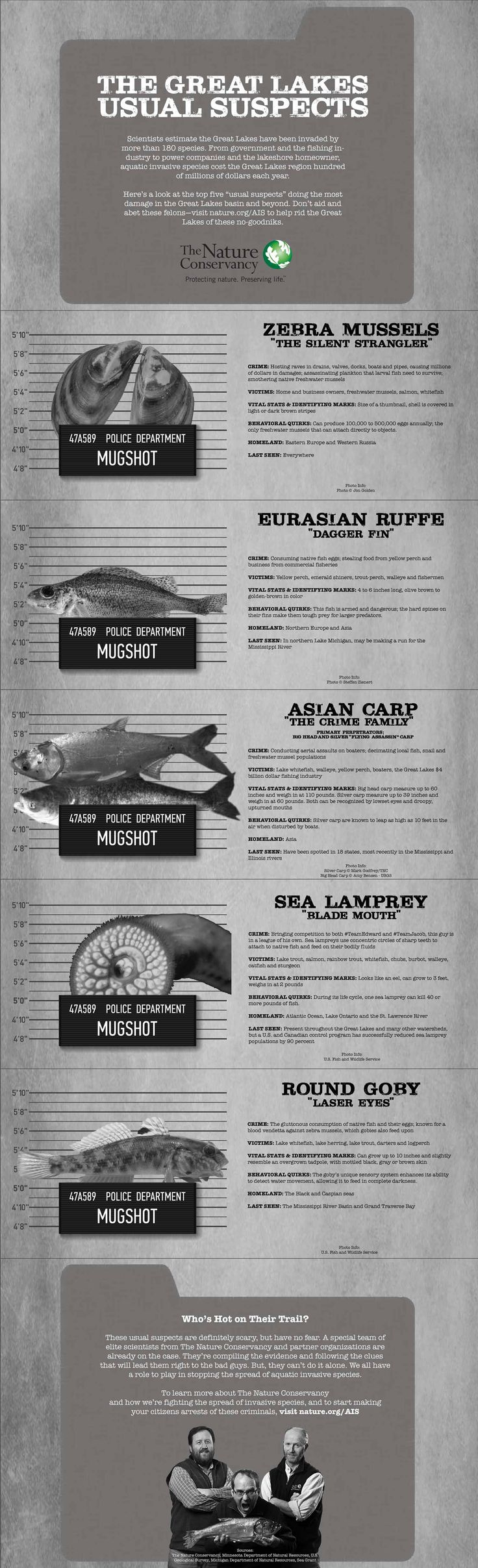 """Nature conservancy's great lakes Invasive Species Infographic; great activity for invasive species, could also do them as """"Wanted posters"""""""