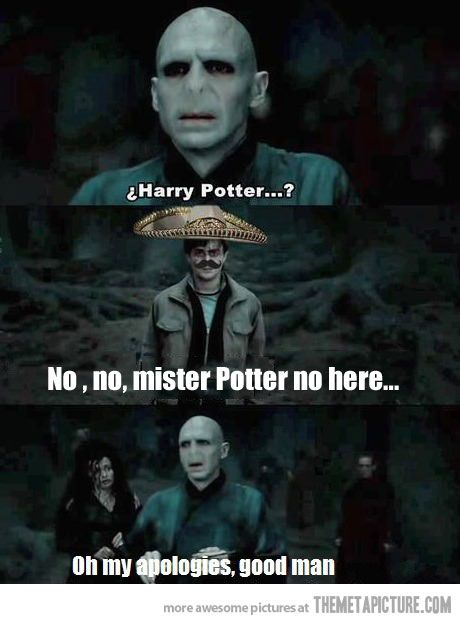 funny-Harry-Potter-Mexican-sombrero.jpg 460×624 pixels