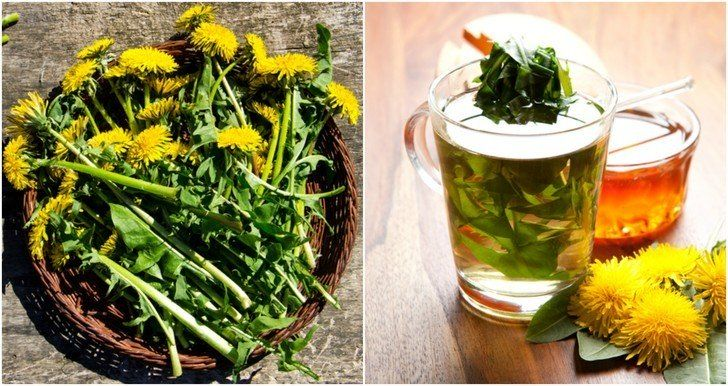 13 Reasons You Should Brew A Cup Of Dandelion Tea In 2020 Dandelion Tea Dandelion Tea Detox Dandelion Leaf Tea