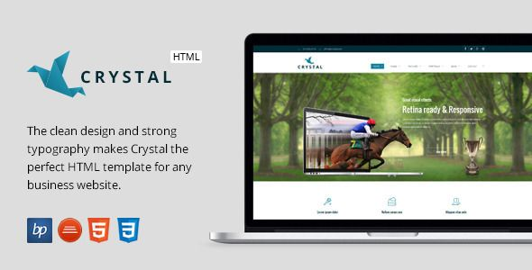 Crystal - Responsive Business HTML5 Template   http://themeforest.net/item/crystal-responsive-business-html5-template/8217179?ref=damiamio      Crystal – Responsive Business HTML5 Template     The clean design and strong typography makes Crystal the perfect HTML template for any business website.                                                                                            CUSTOM FRAMEWORK            We chose to build our custom framework because we wanted something that users…