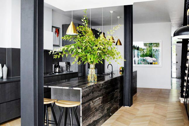 Black kitchen with large plant