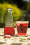 campari and soda... want to find these little soda bottles