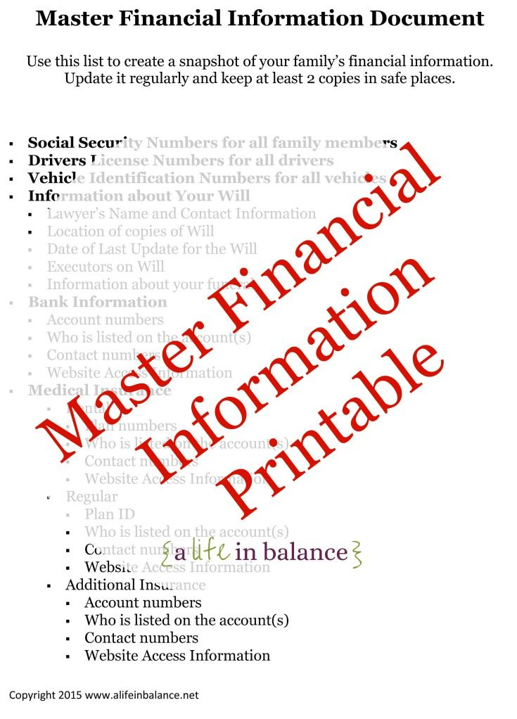 Master Financial Information Document : Keep Your Family's Financial Information in one Document for easy access