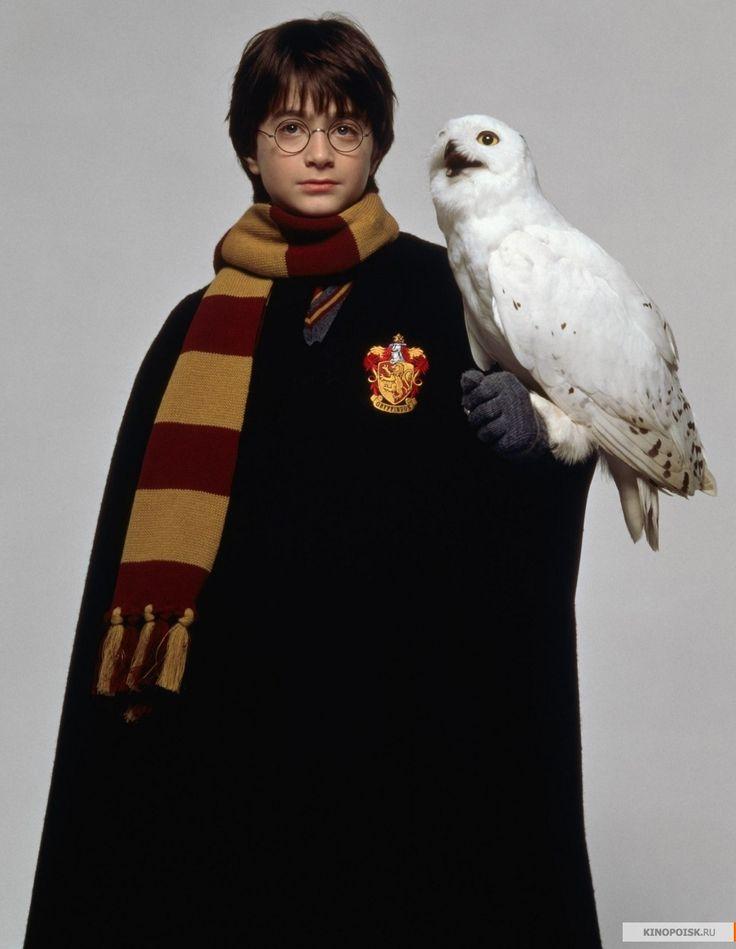 Фото: Гарри Поттер и философский камень