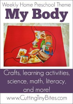 MY BODY theme home preschool. Crafts, math, books, science, literacy, fine motor work and more! Perfect amount of EASY activities for one week of homeschool pre-k.
