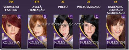 tabela de cores cabelos koleston cores escuras