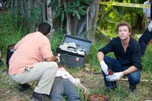 The Glades - Another show that I like